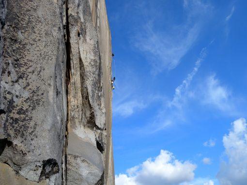 albatross climbers